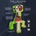 Minecraft Creeper Anatomy Barn T-Shirt