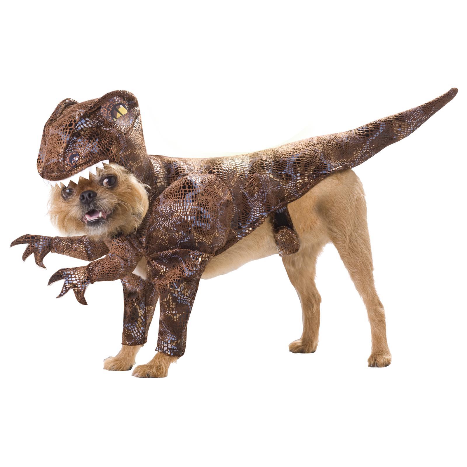 Raptor Maskeraddräkt Hund