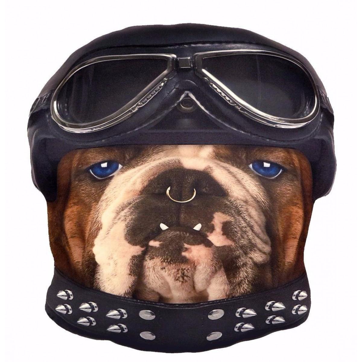 Kudde Biker Bulldog