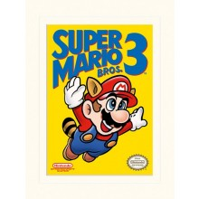 SUPER MARIO BROS. 3 (NES COVER) POSTER