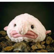 Blobfish Mjukisdjur