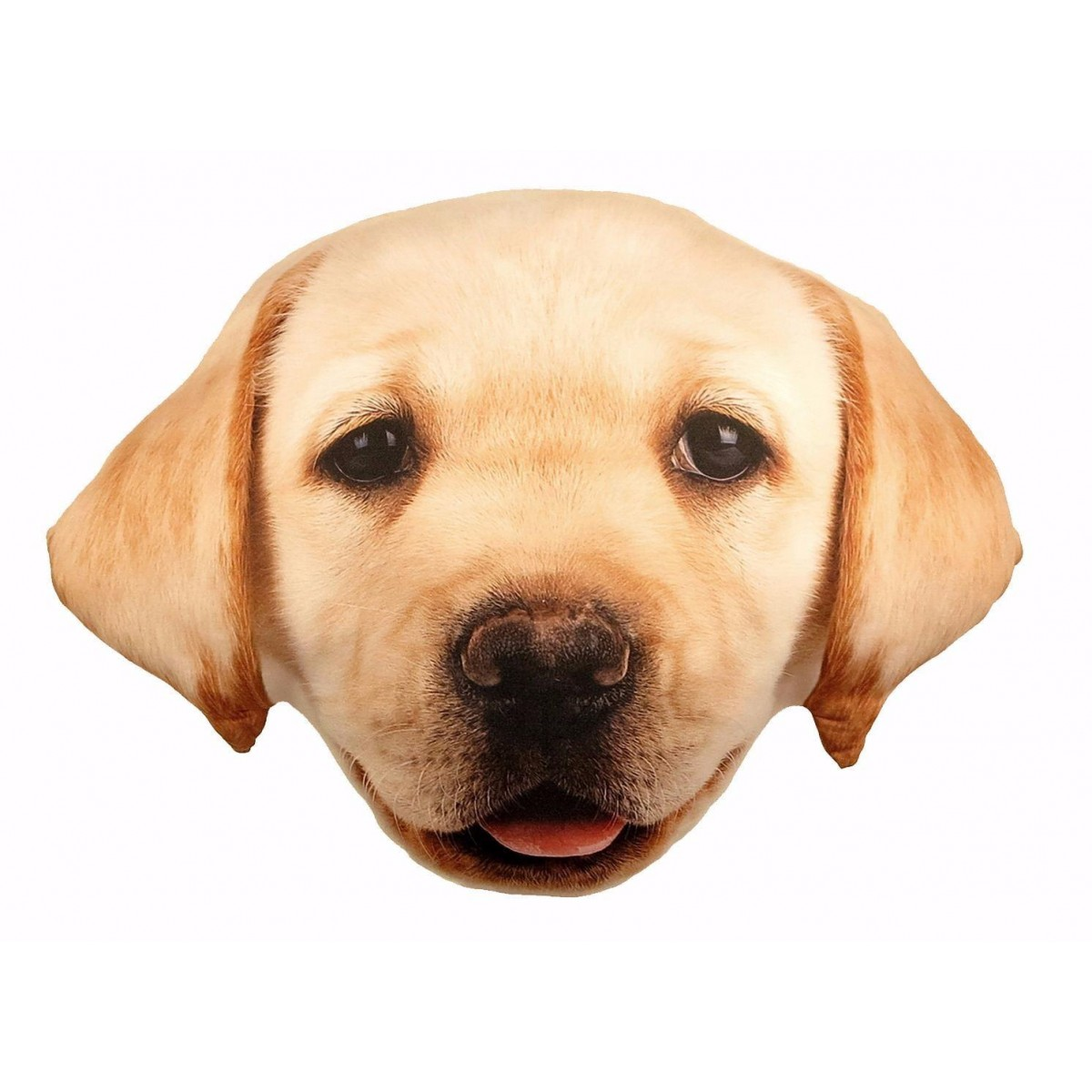 Kudde Hundvalp Labrador