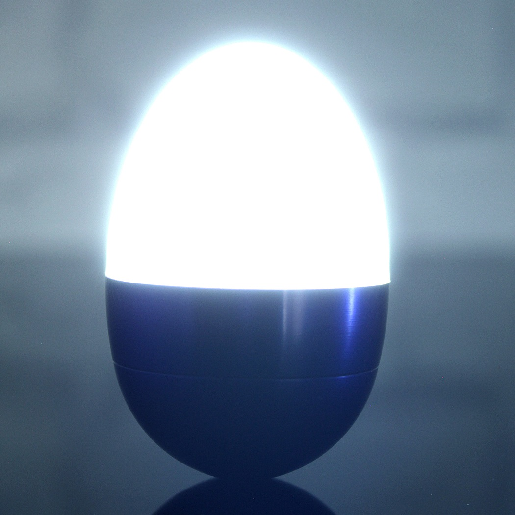 Ägglampa