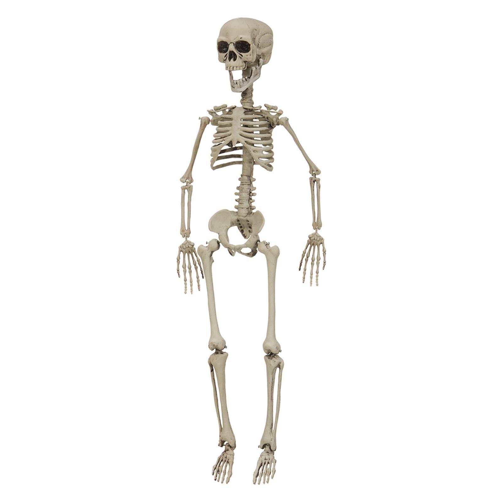 Skelett Festdekoration