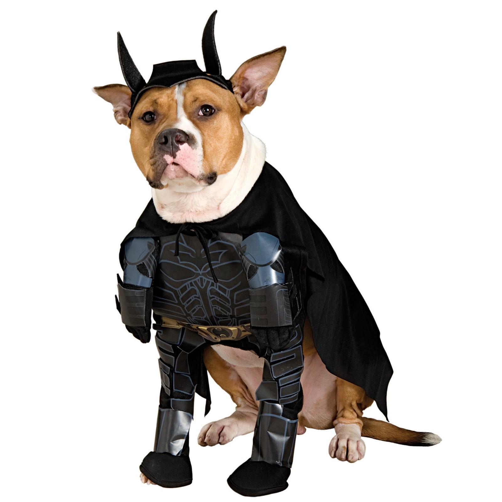 Batman Deluxe Maskeraddräkt Hund thumbnail