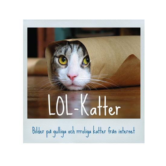 LOL-Katter thumbnail