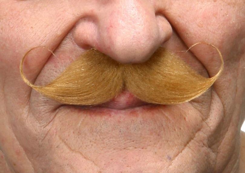 Mustasch Poirot