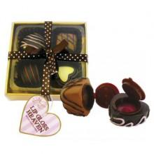 Läppglans Choklad