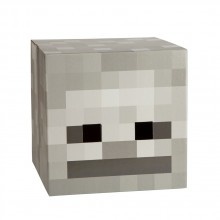 Minecraft Skeleton Huvud