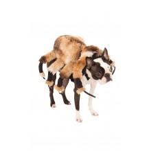 Spindel Hunddräkt