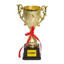 Pokal Student
