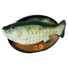 Sjungande Fisken
