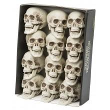 Dödskalle 12-pack