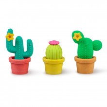 Kaktus Suddgummi 3-pack