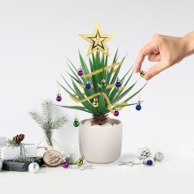 Julgransdekoration För Växter