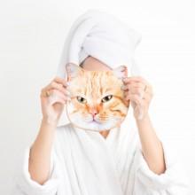 Handdukar Katt Ansikte