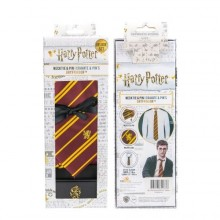 Harry Potter Gryffindor Slips och Pin