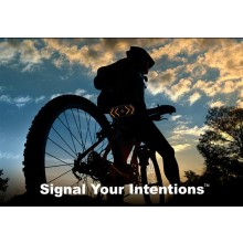 Signalsystem För Cykeln