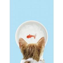 Kattskål Med Guldfisk