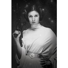 Star Wars Poster Prinsessan Leia