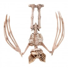Skelett Fladdermus