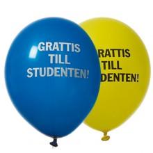 Ballonger Student Gul/Blå 8-pack