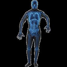 Röntgen Kroppsstrumpa