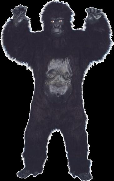 Lyxig Gorilladräkt thumbnail