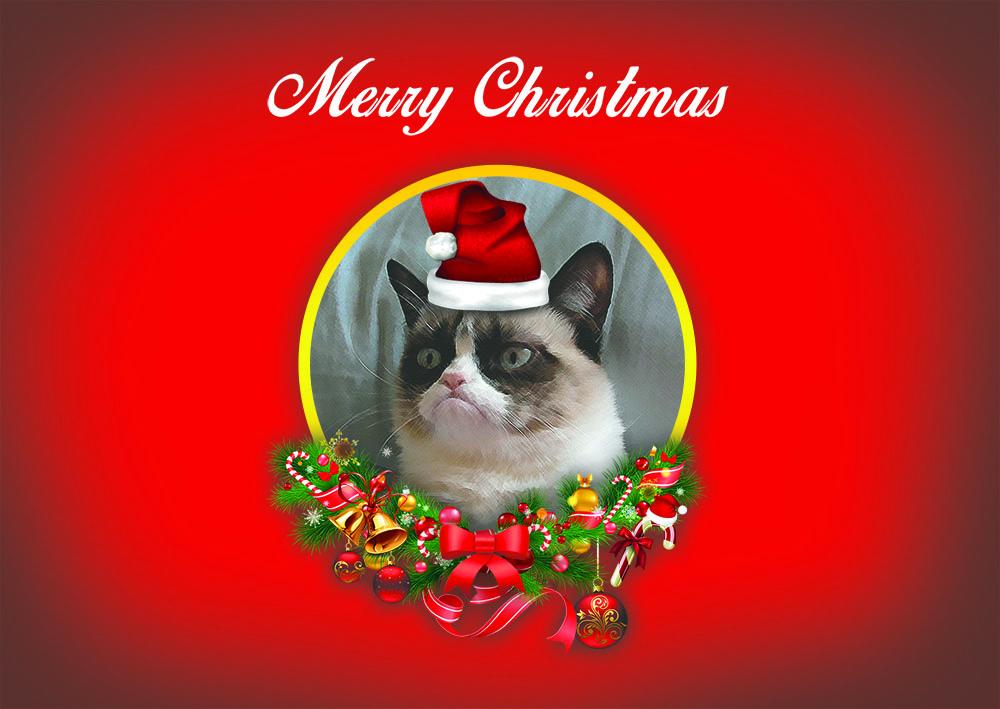 Have a Grumpy Christmas - julkort