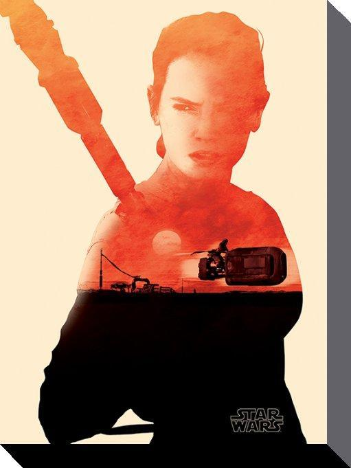 Star Wars Canvas Rey 60 x 80 cm thumbnail